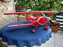 Foto einer Hype Pitts S-1S